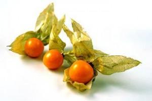 incan-berries