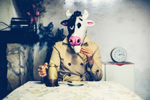 cow_milk